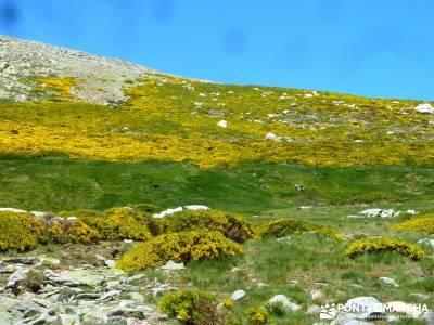 El Morezón - Sierra de Gredos; amigos; conocer gente; la pedriza;calidad en el senderismo